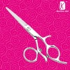 2011 new style hair scissor- R12 autumn promotionals