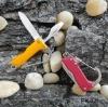 Carabiner gift knife