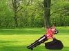 Popular Gasoline Leaf Blower Vacuum EBV360 31cc