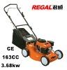 Self Propelled Gasoline Lawn Mower RT-GLW20