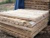Sharp Wood Broom handle