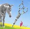 Special Zebra Stripe Tattoo Hairdressing Scissors