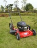 gasoline grass mower