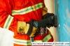 hydraulic rescue door opener,firefighting tools